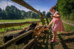 Agroturystyka-z-dzieckiem-Eko-Bajka-1