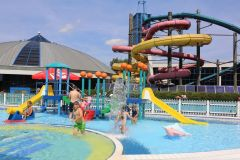 Sportowe-atrakcje-dla-dzieci-na-Śląsku-Nemo